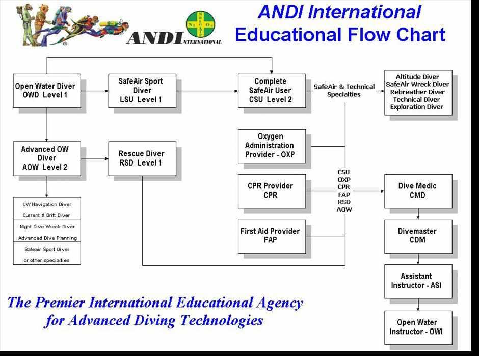 ANDI Flow Chart 1